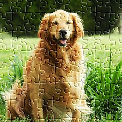 puzzle online spielen jigsaw