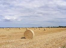 Billets of hay with full sky