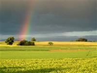 Rainbow, Hausen, Germany
