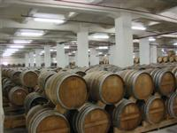 An oak barrel depository in Yerevan Brandy Company