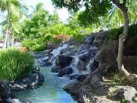Tropical Waterfall in Waikiki Beach