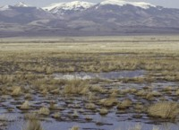 Alamosa/Monte Vista National Wildlife Refuge