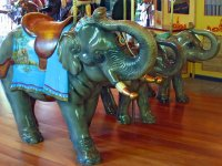 Elephants Carousel
