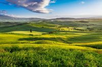 Green Valley, Tuscany, Italy