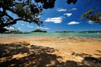 Beach Near Township of Paihia, New Zealand