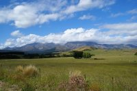 South Island Pasture, New Zealand