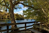 Suwannee River Boardwalk, Georgia, USA