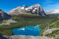 Lake O'Hara and Mount Odaray From the Yukness Ledges, Canada