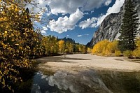 Fall Scene, Yosemite Park, California, USA