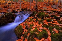 Small Autumn Waterfall