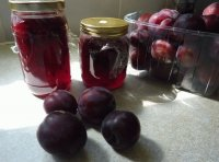 Canning Plums to Jam