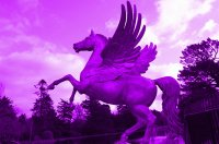 Purple Horse Sculpture