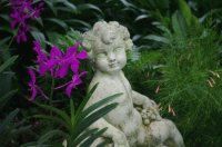 Angel Statue-Natural Orchid Garden-Singapore