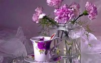 Carnations and Tea Cup