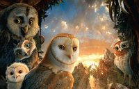 The Owls of Ga Hoole