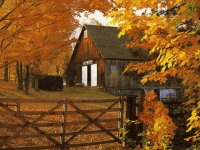 autumn country barn