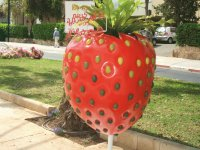 Statue of the strawberry - Ramat Hasharon,Israel