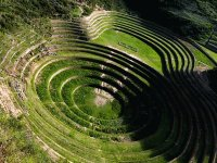 Inca fields
