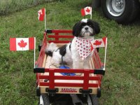 Happy Canada Day everyone