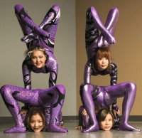 Purple Contortionists