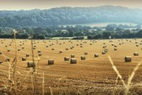 Hay Bales Herefordshire