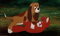 the fox and the hound3