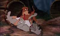 the fox and the hound5