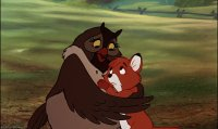the fox and the hound6