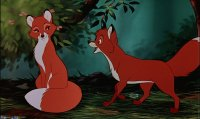 the fox and the hound8