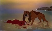 the fox and the hound10