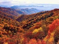 fall in the Smokies NC