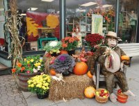 Fall shop display