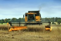 Big Yellow Combine