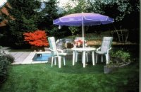 Purple Gargen Umbrella