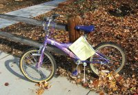 Lost Purple Bike in Fall Leaves