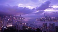 Purple Hong Kong