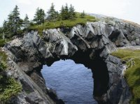The Berry Head Bow   Canada