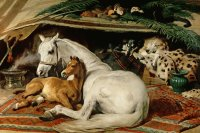 Painting from Sir Edwin Landseer  Arabic Horses