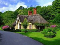 Thatched Cottage in Ireland, and yes, the grass re