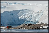 Port Lockroy  Antartica