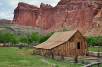 Old Barn Capital Reef National Park  Utah  USA