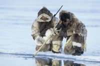 Inuits Fishing for Food