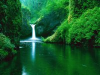 Punch Bowl Falls-Eagle Creek Widerness
