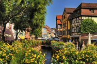 Summer in the Alsace  France