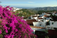 Colorful Andalucia  Spain
