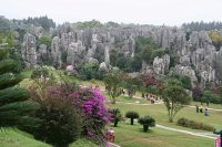Stone Forest outside Kunming  Yunnan  China