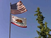 USA and California Flags in Santa Ana Winds