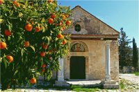 Oranges next to the Church   Cyprus
