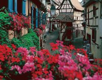 Street in Eguisheim  Alsace  France