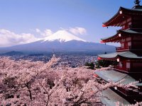 Mt Fuji during Springtime